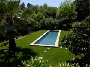Piscine et arbres en Provence