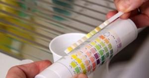 les-bandelettes-test-pratiques-et-efficaces-pour-analyser-l-eau-de-la-piscine-5086-1200-630